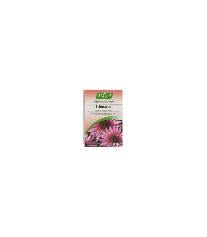 Echinacea Caramelos