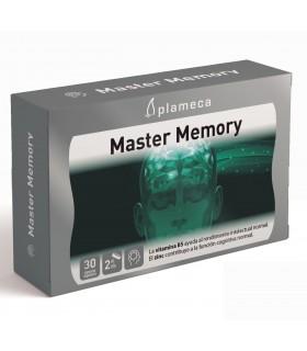 MASTER MEMORY 30 CAP PLAMECA