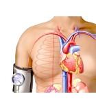 Problemas circulatorios