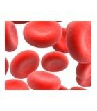 Anemias y Carencias de Hierro