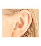 Los oídos y las orejas