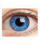 Sistema ocular (vista)